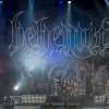 behemoth-9892