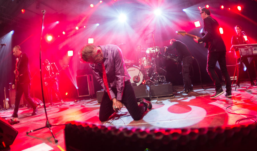 Photos concerts : Didier Wampas + Dwayne Dopsie + Airnadette + Fill's Monkey